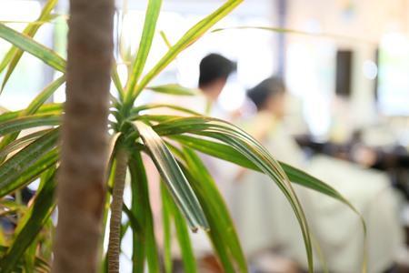 松江市の男性専用美容室・理容室・床屋の商品案内